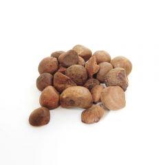 Guarana Seeds 10g BIO